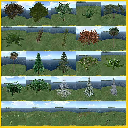 Linden_plants_1a.jpg